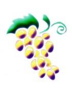 Notre sélection de vins de Provence blanc.