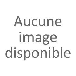 ARBOIS SAVAGNIN BIO DOMAINE DE LA PINTE BLANC 2015
